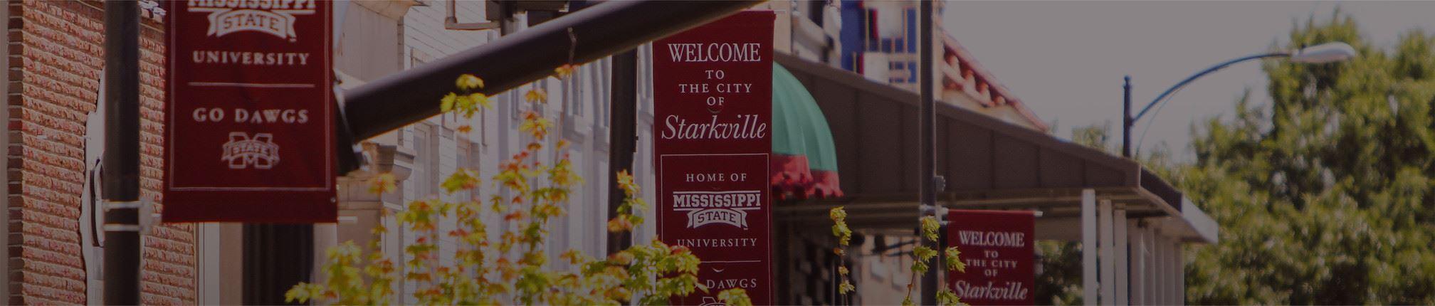 Starkville ms escorts